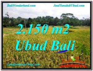 FOR SALE 2,150 m2 LAND IN Ubud Tegalalang BALI TJUB606