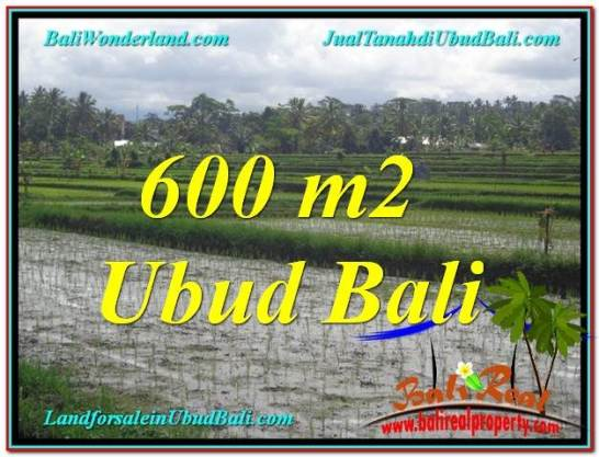 Beautiful PROPERTY LAND FOR SALE IN UBUD BALI TJUB607
