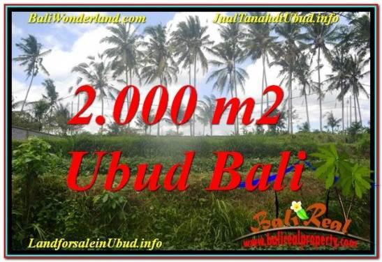 FOR SALE Beautiful PROPERTY 2,000 m2 LAND IN Ubud Pejeng TJUB625