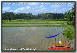 Exotic 3,200 m2 LAND IN UBUD BALI FOR SALE TJUB628