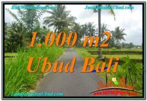 FOR SALE Affordable PROPERTY LAND IN Ubud Tampak Siring BALI TJUB634