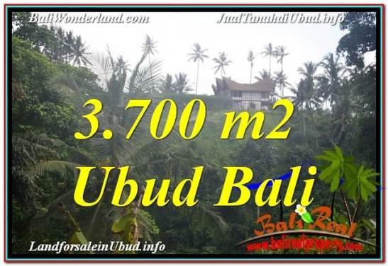 UBUD 3,700 m2 LAND FOR SALE TJUB640