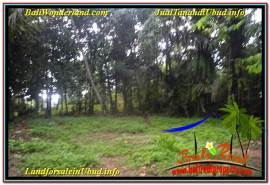 Affordable PROPERTY LAND SALE IN UBUD TJUB639