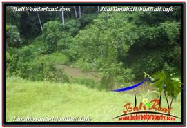 FOR SALE Exotic PROPERTY LAND IN UBUD TJUB641