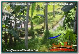Magnificent PROPERTY 5,569 m2 LAND IN Sentral / Ubud Center FOR SALE TJUB642