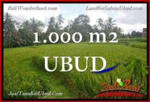 FOR SALE 1,000 m2 LAND IN UBUD TJUB653