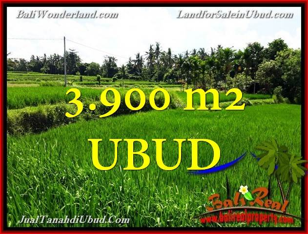 LAND SALE IN Ubud Pejeng TJUB658