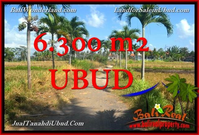 Beautiful 6,300 m2 LAND FOR SALE IN UBUD BALI TJUB662