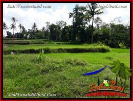 FOR SALE Magnificent 600 m2 LAND IN UBUD BALI TJUB657
