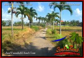 Affordable PROPERTY 6,300 m2 LAND SALE IN UBUD BALI TJUB662