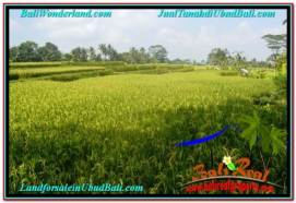 Magnificent PROPERTY LAND FOR SALE IN UBUD BALI TJUB667