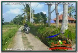 Exotic 2,000 m2 LAND FOR SALE IN UBUD TEGALALANG TJUB669