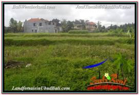 Affordable PROPERTY LAND IN UBUD BALI FOR SALE TJUB672
