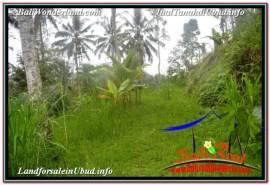 Exotic PROPERTY LAND SALE IN UBUD BALI TJUB674