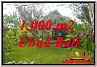 Affordable 1,000 m2 LAND SALE IN SENTRAL UBUD TJUB680