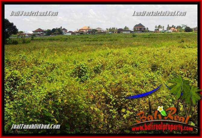 FOR sale Exotic Property Land in Ubud TJUB687