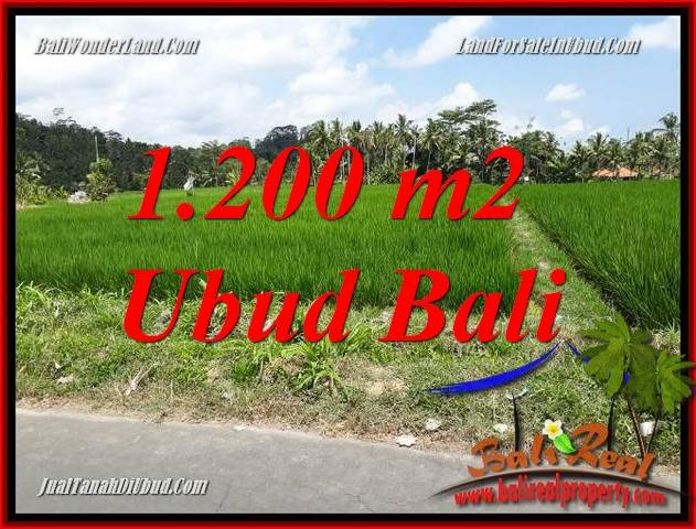 Exotic Ubud Bali 1,200 m2 Land for sale TJUB694