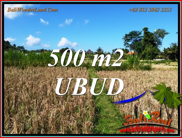 LAND for SALE in UBUD BALI TJUB810