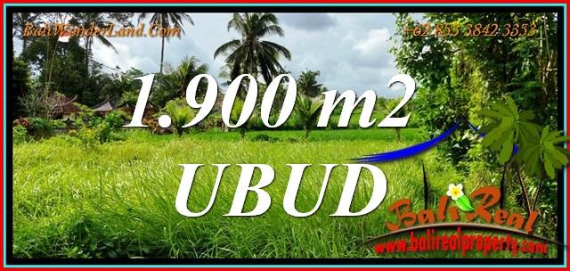 Affordable UBUD BALI LAND for SALE TJUB811