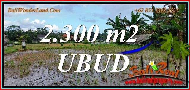 Beautiful 2,300 m2 LAND SALE in Tampaksiring BALI TJUB813
