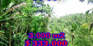 Affordable Land for sale in Ubud Bali 3.000 m2 Stunning by the river valley
