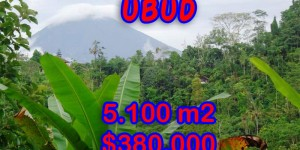 Land in Bali for sale, Eye-catching view in Ubud Bali – 5.100 sqm @ $ 74