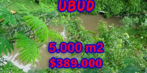 Land for sale in Bali, Fabulous view in Ubud Bali – 5.000 sqm @ $ 78