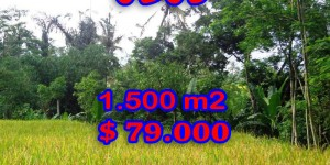 Fabulous Land for sale in Ubud Bali, rice fields view in Ubud Tegalalang – TJUB243