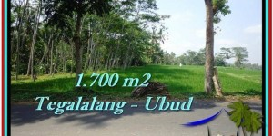 Affordable 1,700 m2 LAND SALE IN UBUD TJUB518