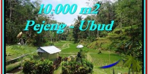 FOR SALE Exotic 10,000 m2 LAND IN UBUD TJUB519