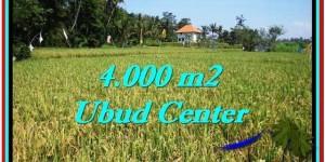 Exotic Sentral Ubud BALI LAND FOR SALE TJUB527
