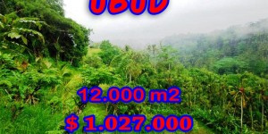 Land in Bali for sale, Excellent Property in Ubud Bali – 12.000 sqm @ $ 86