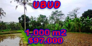 Land for sale in Bali, Amazing view in Ubud Bali – 1.000 sqm @ $ 97