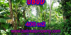 Amazing Land in Bali for sale in Ubud Center Bali – TJUB371