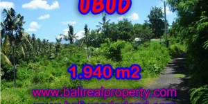 Stunning Property for sale in Bali land sale in Ubud Bali – TJUB379
