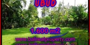 Magnificent PROPERTY UBUD BALI 1,600 m2 LAND FOR SALE TJUB416