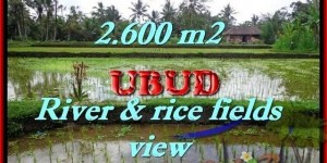 Magnificent LAND FOR SALE IN Ubud Tegalalang BALI TJUB421