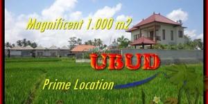1.000 m2 LAND SALE IN Sentral Ubud BALI TJUB445