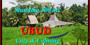 FOR SALE Beautiful PROPERTY 500 m2 LAND IN UBUD TJUB459