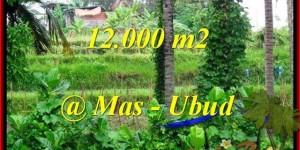 LAND SALE IN Sentral Ubud TJUB492