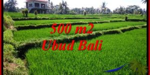 Exotic LAND SALE IN Sentral Ubud BALI TJUB543