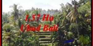 FOR SALE Affordable PROPERTY 15,700 m2 LAND IN UBUD BALI TJUB549