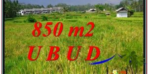 FOR SALE Exotic LAND IN Ubud Pejeng BALI TJUB583