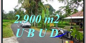 Beautiful LAND SALE IN Sentral Ubud BALI TJUB586