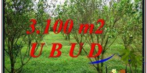 FOR SALE Beautiful PROPERTY LAND IN UBUD TJUB593