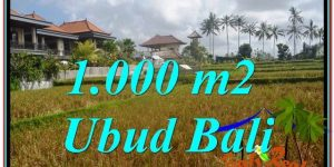 FOR SALE Magnificent PROPERTY 1,000 m2 LAND IN UBUD BALI TJUB618