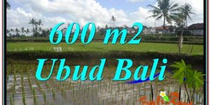 Exotic LAND FOR SALE IN UBUD TJUB621