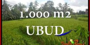 Beautiful 1,000 m2 LAND FOR SALE IN UBUD TJUB653