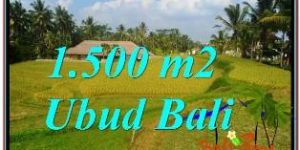 FOR SALE Beautiful 1,500 m2 LAND IN UBUD BALI TJUB668
