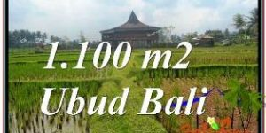 Magnificent PROPERTY 1,100 m2 LAND SALE IN SENTRAL UBUD TJUB670